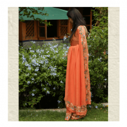 Carrot Orange Saree By ThaanIndia in Amravati